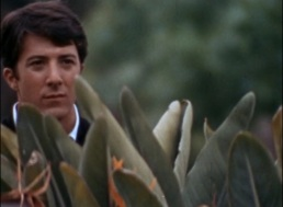 Le Lauréat, Mike Nichols 1967 The Graduate Lawrence Truman Productions (2)