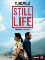 Still Life, Jia Zhangke (2007)