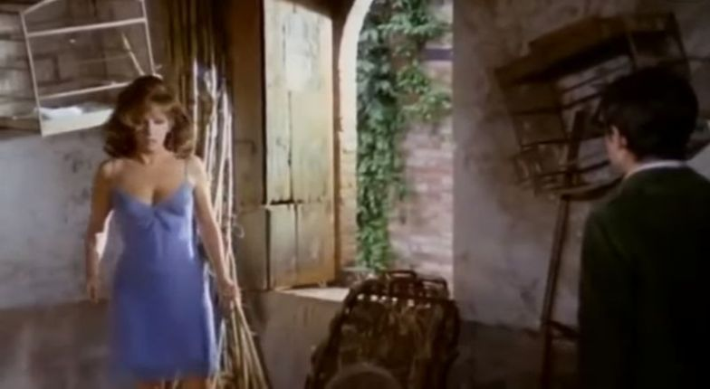 Ce merveilleux automne, Mauro Bolognini 1969 Un bellissimo novembre Adelphia Compagnia Cinematografica, Les Productions Artistes Associés (8)_