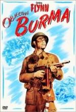 Objective, Burma! Aventures en Birmanie, Raoul Walsh (1945)