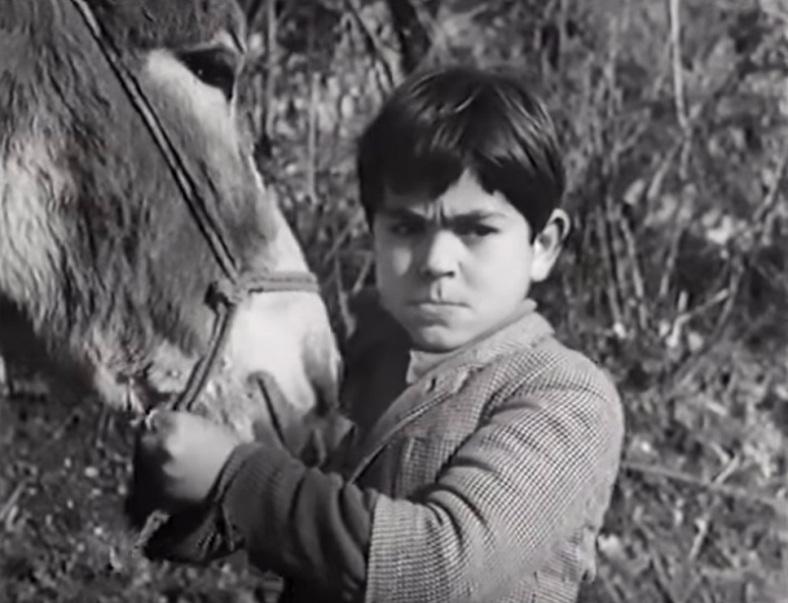 Peppino et Violetta, Maurice Cloche 1951 Constellation Entertainment, Excelsa Film (2)